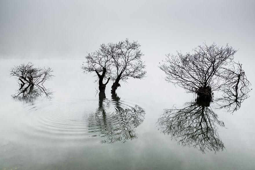 The 2014 Sony World Photography Award Winners. Number 15 Is Unreal.