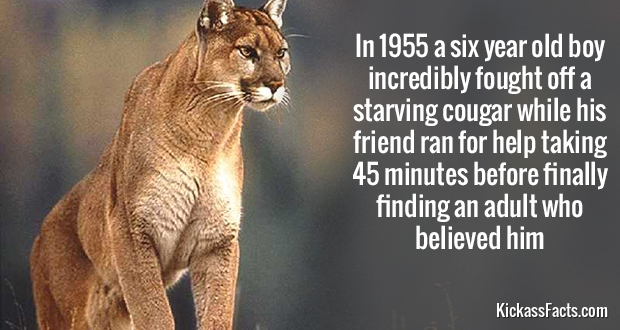 10 Shocking Facts About Random Things That You Didn't Know About. The 3rd One Is Crazy. WOW.