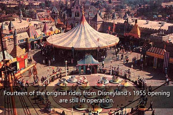 I Thought I Knew Everything About Disneyland Until I Saw These 50 Know Facts. These Are Crazy.